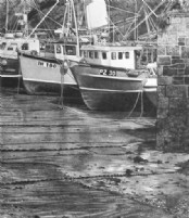 The Fishing Fleet - Pencil