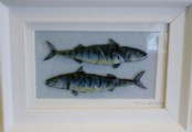 Double Mackerel - Glass